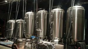 benchmark brewing