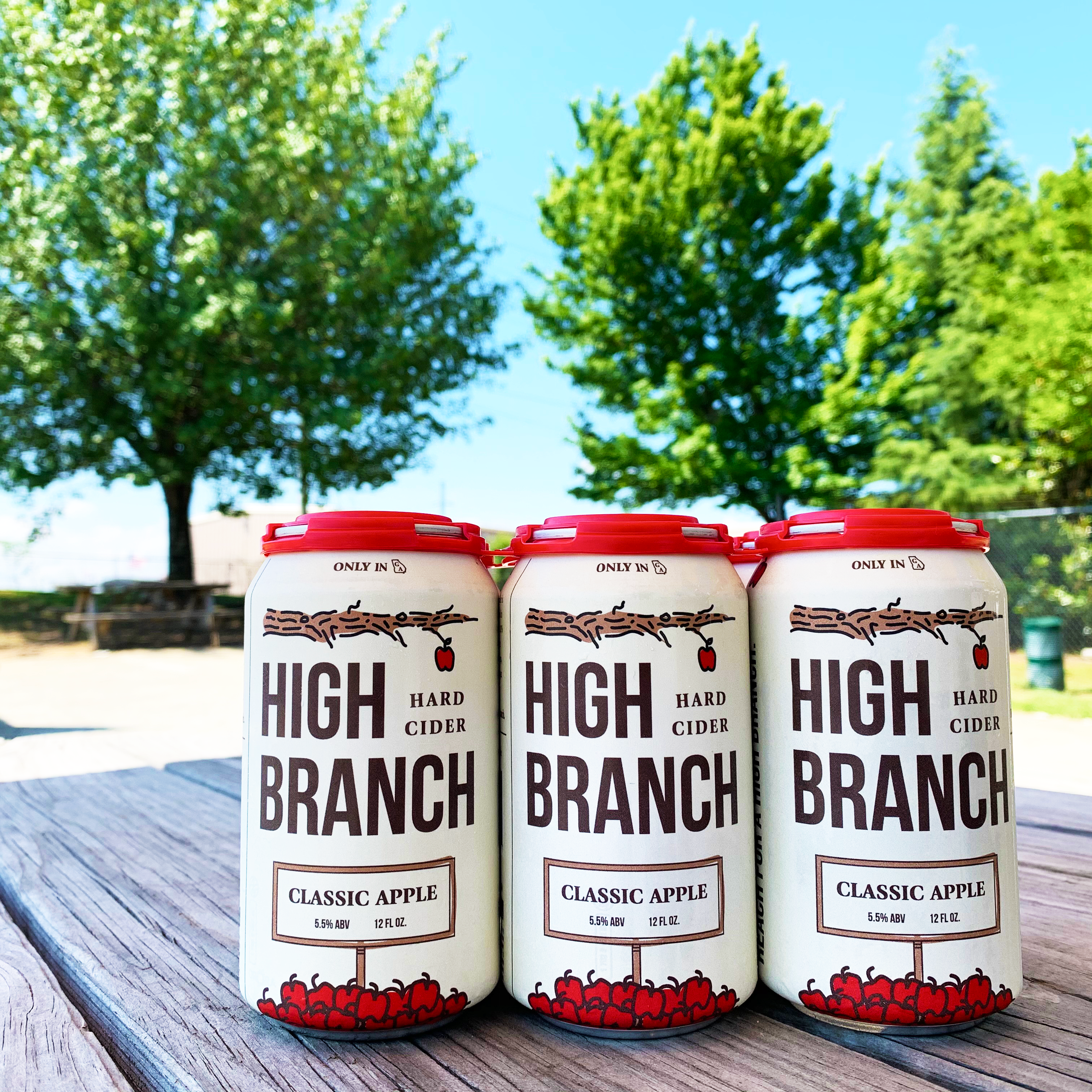 Dry County Brewing Company Encourages You To Reach For A High Branch